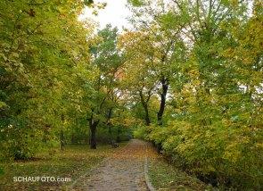 Heute ist angenehmer Herbst angesagt.