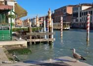 Einfach nur Venedig - auch im November!