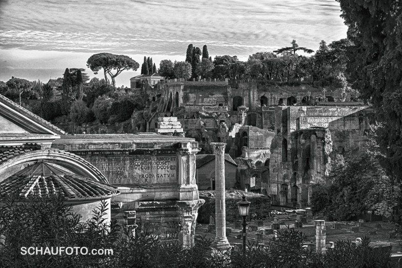 ... und ein letzter Blick auf's Forum Romanum und den Palatin.