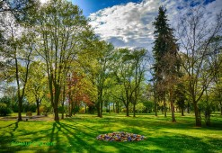 Kurpark-Frühling