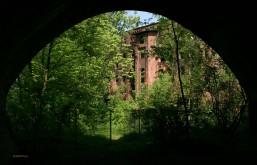 2008 - wilder Zugang