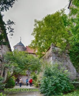 Burghof mit Bewuchs