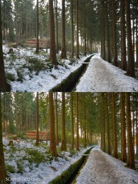 Harzer Holz- und Wasserwirtschaft