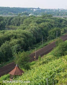 Erster Rückblick gen Schloss Neu-Augustusburg