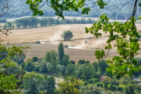 Kaiserblick: Heute auf Erntemanöver