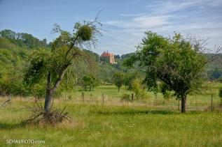 Schloss Goseck grüßt