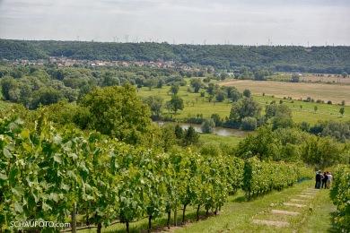 Weingut Goseck: Blick nach Leißling