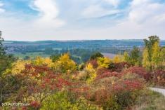 Vorn: Herbstfarben; Hinten: Burgscheidungen.