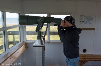Mit großer Kanone auf kleine Spatzen.