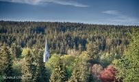 Bergkirche im Wald
