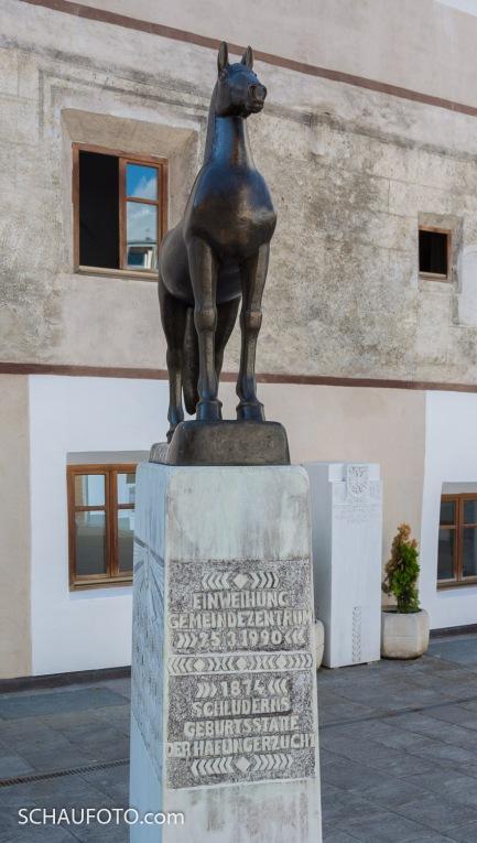 Schluderns - Geburtstätte der Haflingerzucht