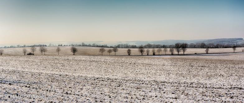 Winterfelder