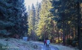 Den Kalauer kann ich mir nicht verkneifen: Mit Frauen im Wald bei Frauenwald.