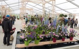 Blumenschauhalle
