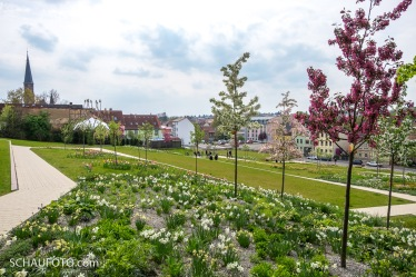 Terrassengarten 2