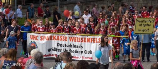 Schlossfestumzug 2017 - 22