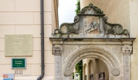 Portal Leucorea