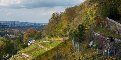 Fernsicht auf Dresdens Skyline